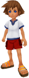 http://images2.wikia.nocookie.net/__cb20091128072204/kingdomhearts/images/8/86/Young_Sora.png